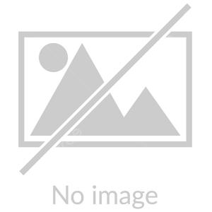 مداحی کربلایی حسین طاهری علوی میمیرم برای حرم حضرت زینب